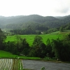 View of rice field on way to Doi Inthanon National Park
