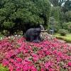 Statues of elephants found in the Kings Garden
