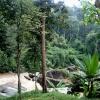 River near Wachirathan Waterfall
