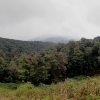 View from road on route to the summit of Doi Inthanon