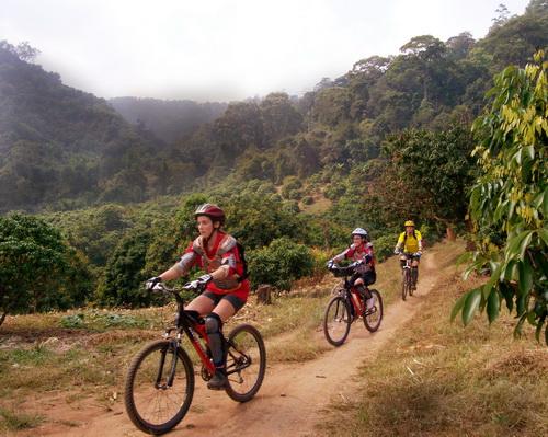 02c95761255 ChiangMai Mountain Biking Chiang Mai Local Tours